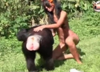 Sexy monkey in amazing exotic bestiality XXX